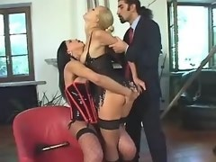 Shemales in stockings in crazy orgy
