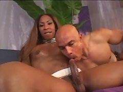 Great ebony tranny and white bloke suck each other