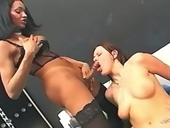 Vixen sucks shemale and bloke and gets cum on tits