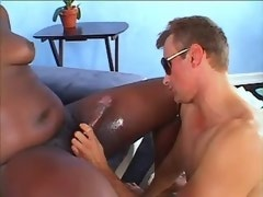 Funny black shemale and dude do handjob each other