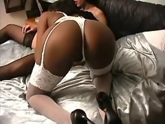 Lustful shemale in stockings seduces ebony cutie